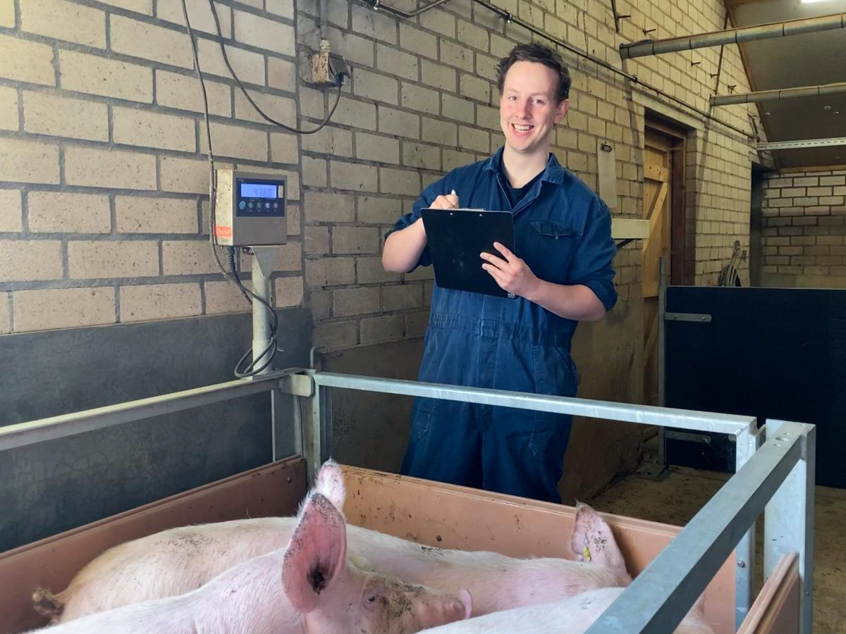 Emiel Friesen wegen varkens 1200x900 bewerkt